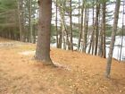Eagle River Wisconsin Vacant Waterfront Lake Lot Property on Rice Lake