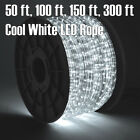 50 100 150 30 Cool White LED Rope Light 2 Wire 110V Outdoor Christmas Party