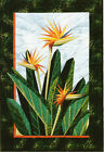 Birds of Paradise foundation paper piecing quilt pattern by Designers Workshop