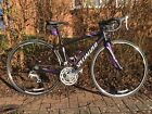Specialized Dolce Equipped 2013 48cm Womens Road Bike Near MINT Condition