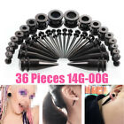 36Pcs 14G-00G Black Stainless Steel Screw for Ear Plug Stretching Expande Kit