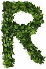 """Modern Home 12"""" Real Preserved Boxwood Monogram Wreath Letters - R"""