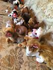 13 TY BEANIE BABY DOGS -MINT- Sarge,Courage, Kippy, Holmes, Bo, Sniffer, Rufus +