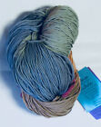 1 Five OZ Skein Hand Painted Schaefer Yarn Co Nicole Extrafine Merino Sock