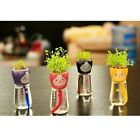 Self Watering Flowerpot Cute Animal Doll Pot With Straw Seed Home Office Decor