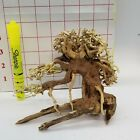 SMALL Aquarium Driftwood Bonsai Tree for Moss
