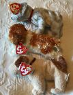 3 Ty Beanie Babies Puppy Dogs Rufus, Sampson, Tricks MWMT Tag protector (box 4)