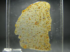 NWA 5515 CK4 Carbonaceous Chondrite Meteorite THIN SECTION RARE THIN SECTION