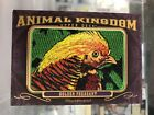 Hunting with 2012 Goodwin Champions Animal Kingdom Patch Cards 17