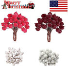 40PCS MINI CHRISTMAS FOAM FROSTED FRUIT ARTIFICIAL HOLLY BERRY HOME DECOR US DD