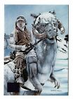 2014 Topps Frozen Trading Cards 3