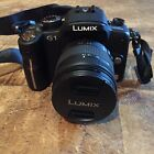 Panasonic Lumix DMC G1 Vario 12.1 Megapixel Digital Camera With 14-45mm Lens