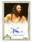 2014 Topps WWE Autographs Gallery and Guide 19