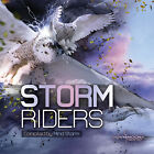Storm Riders - by Mind Storm (CD,Dec-2012)  [Goa Trance / Rare / Import]