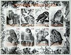 OWL STAMPS SHEET MNH BIRD STAMPS WILDLIFE STAMPS PRIVATE LOCAL ISSUE
