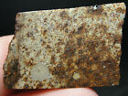 METEORITE SLICE or END CUT TOP QUALITY SLD 2235 1318g GREAT SPECIMEN