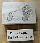 Stampa Rosa House Mouse Rubber Stamps Raisin Snack