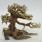 Damaged SMALL Aquarium Driftwood Bonsai Tree for Moss