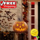 17 LED Halloween Pumpkin with Lights  Sounds Free Shipping