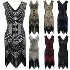 Vintage Roaring 20s 1920s Dress Flapper Great Gatsby Party Sequin Fringe Dresses