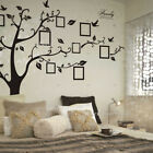 Family Tree Wall Sticker Decal Removable Picture Frame Photo Home Nursery 7999