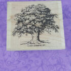Stampin Up Rubber Stamp 2001 Tree Nature Outdoors Wooden Mounted
