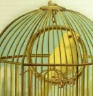 1880s Large Die Cut Bird Cage  2 Lovely Canaries Fab 7 O