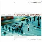David Lubben : A Place Called Surrender CD DISC ONLY #K86