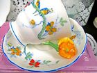 RADFORDS tea cup and saucer flower handle Macaw bird painted teacup 1940s