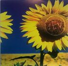 Sev ‎– Sunflower (CD 1996 Nu Metal Deez Nutz Productions) *Very Good*