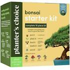 Bonsai Starter Kit The Complete Growing Kit to Easily Grow 4 Bonsai Trees NEW