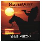 Spirit Visions New Age CD DISC ONLY #L286