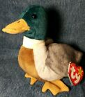 Ty Beanie Baby Jake The Drake From 1997 Retired With Tags Errors