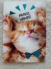 Cute Cat Birthday Card Praise Hands Givin it up for You on Your Birthday