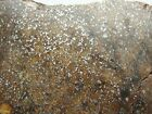 METEORITE SLICE or END CUT TOP QUALITY SFT 0908 7162g GREAT SPECIMEN