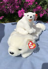 Ty Beanie Baby Polar Bears Aurora And Buddy Chilly Retired