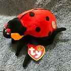 Ty Beanie Babies Countess Lady bug of the month, 2003, PE Pellets, Mint w/ Tag
