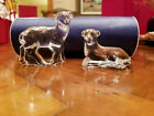 Waterford Crystal The Nativity Collection Sheep Lamb pair in Storage Tube