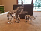 WATERFORD CRYSTAL ELEPHANT COW CALF PAIR 7 MOTHER  3 BABY ELEPHANTS BOXED