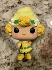 Ultimate Funko Pop Strawberry Shortcake Figures Gallery and Checklist 23