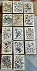Rubber Stamp Lot PXS Botanical Flowers Stamps Rare Retired Will NOT Separate