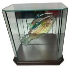 Large Blown Glass Fish Figurine Thin Glass Painted In Display Case Decoration
