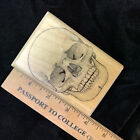 Wood Mounted Halloween Rubber Stamp Large Skull 2 1 2 X 3 3 4 by Mostly Animal