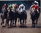 HORSE RACE  JOCKYS IN MUD PROFESSIONAL RACING PHOTO