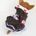 Brown Bear Dress dog clothes Pet APPAREL Chihuahua L