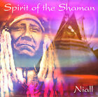 SPIRIT OF THE SHAMAN CD ALBUM NATIVE SPIRITUAL HEALING INDIAN MUSIC MEDICINE MAN