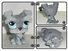 New Littlest Pet Shop Dog Figure LPS66