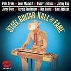 Various Artists - Steel Guitar Hall Of Fame [New CD]