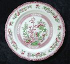 Indian Tree DINNER PLATE by W R Midwinter Stafffordshire England EXCELLENT!