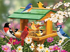 SPRING FEAST    1000 Pc Puzzle   Birds Gardens Bird House   SunsOut